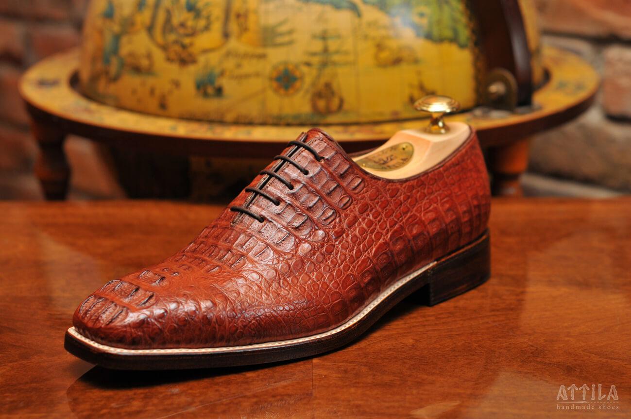 1. Cayman hornback shoes